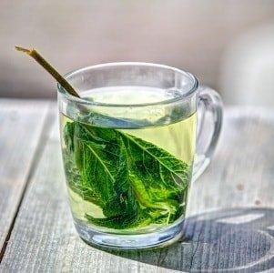 Как влияет на геморрой зеленый чай