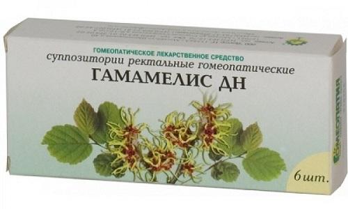 Довольно-таки часто в первые дни применения Гамамелиса симптоматика геморроя обостряется