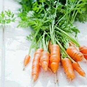 Лечение геморроя в домашних условиях морковью -