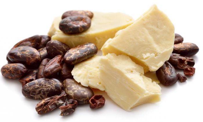 Масло какао, идеально подходит для создания прополисно-жировой фракции