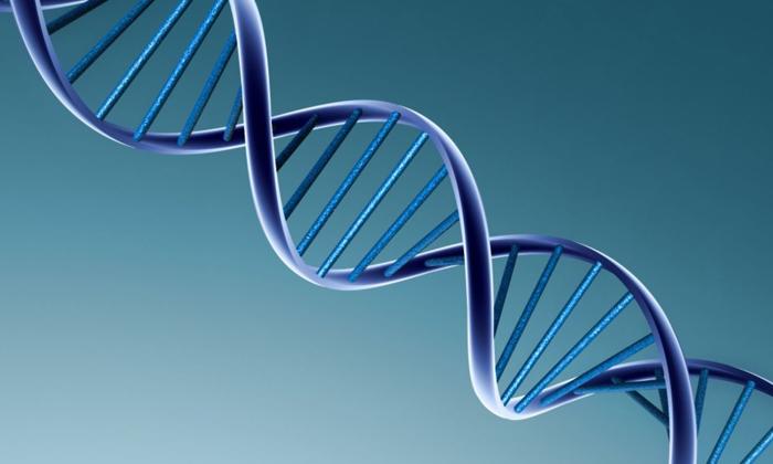 При генетической наследственности может появиться рак