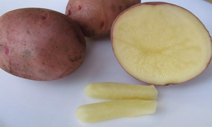 Эффективными считаются свечи из картофеля