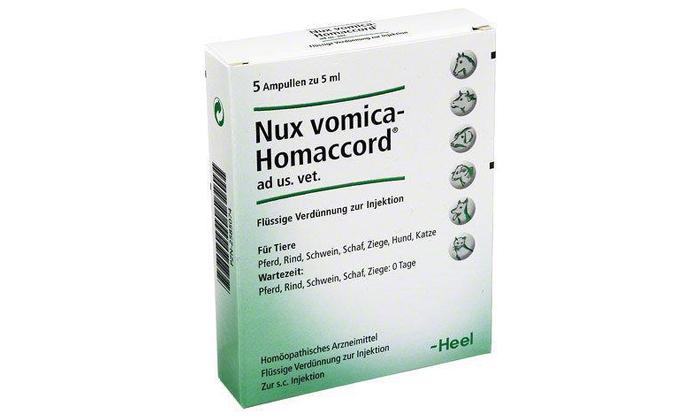 Нукс Вомика – гомеопатическое средство, изготовленное из семян чилибухи