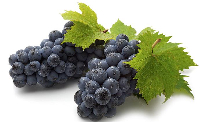 Нельзя употреблять виноград