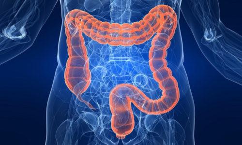 При пероральном приеме АСД 2 нормализует работу кишечника