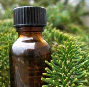Масло чайного дерева при геморрое и трещинах