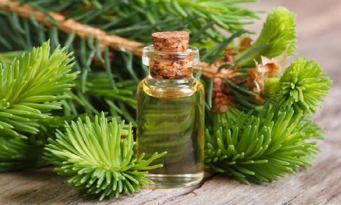 Как пихтовое масло помогает от геморроя? Целебные свойства и особенности применения