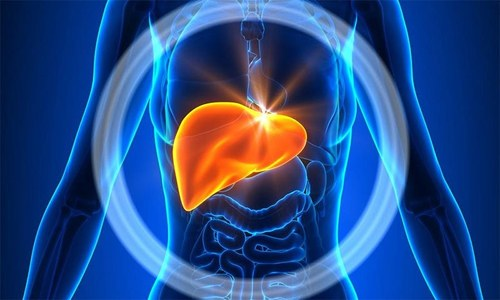Венозная кровь от толстой кишки поступает в печень. Поэтому гематогенные отсевы колоректального рака чаще всего определяются в данном органе