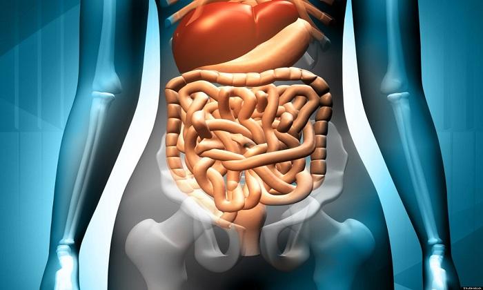 Целевое назначение процедуры: очищение кишечника от скапливающихся при запоре каловых масс