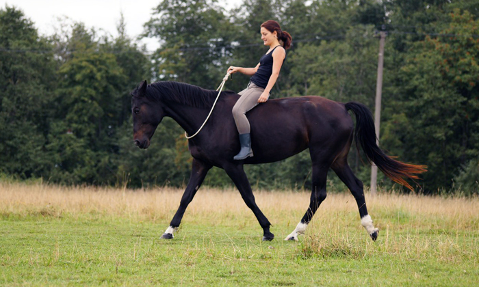 Больным геморроем запрещена езда на лошади