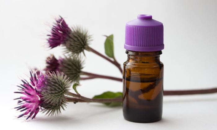 Если добавить к мёду репейное масло, то можно получить средство, которое эффективно заживляет ранки