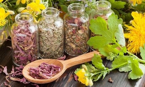 На начальных стадиях геморроя помогают народные методы лечения заболевания - травы
