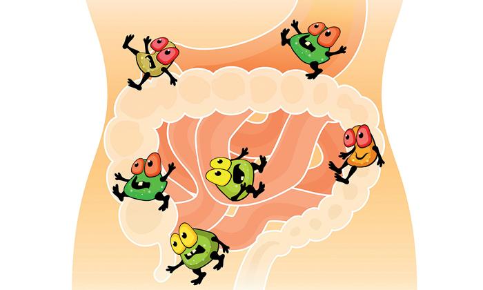 Свекла способна устранить дисбактериоз кишечника
