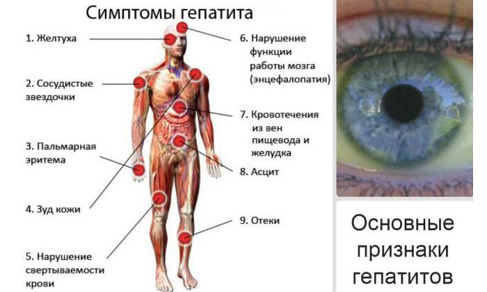 Перед геморроидэктомией нужно сделать пробу крови на гепатит