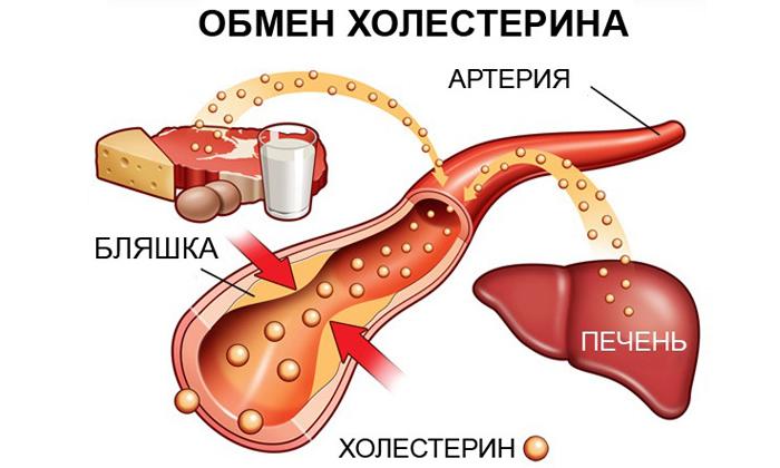Анализ крови также покажет уровень холестерина