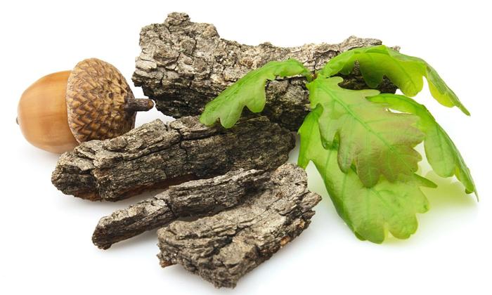 Травяной сбор включает в себя кору дуба