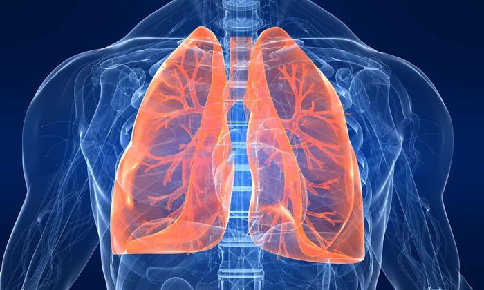 Катание на велосипеде тренирует дыхательную систему
