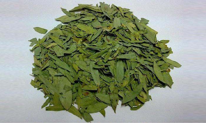 В состав Проктофитола входят листья сенны