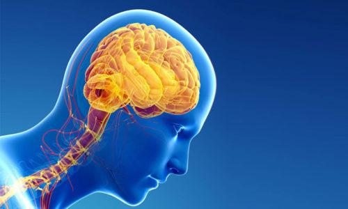 Лидокаин блокирует возникновение импульсов в нервных окончаниях и замедляет проведение их по нервным волокнам к головному мозгу