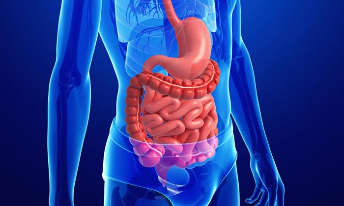 Воздействие продуктов распада спирта негативно отражается на слизистом эпителии пищеварительного тракта