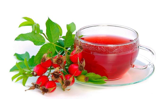 Шиповниковые ягоды это натуральные средства с венотонизирующим действием