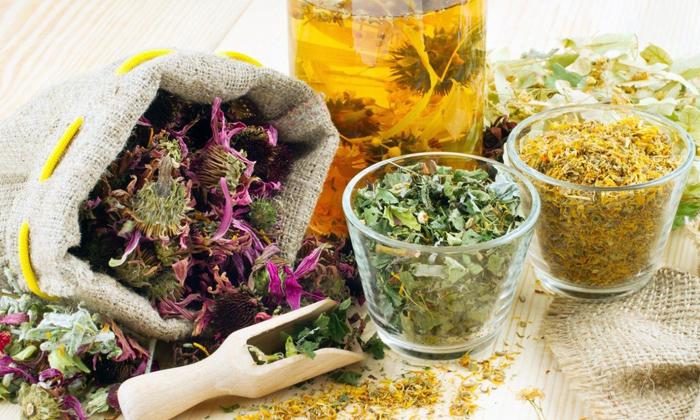 Какие сборы эффективны при геморрое и как их применять? ТОП-10 рецептов травяных сборов