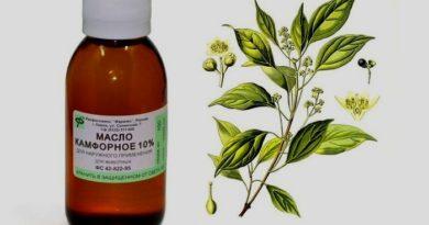 Лечение геморроя камфорным маслом: рецепты средств и методы применения
