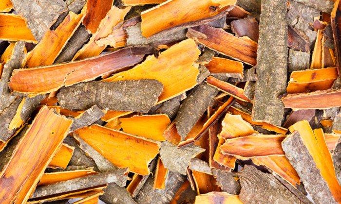Кора крушины содержит сапонины, пектин, органические кислоты, кумарин, применяется лишь спустя год после сбора, тогда безопасно использование ее слабительного воздействия