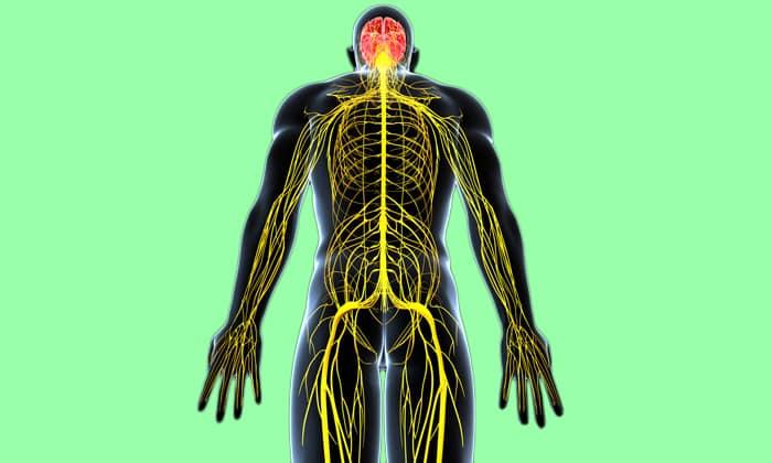 Препарат способен блокировать импульсы в окончаниях нервов