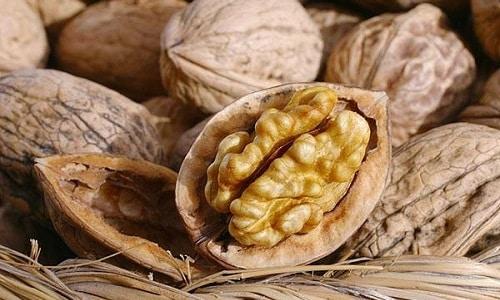 Сочетание меда и различных орехов, особенно грецких, не только вкусно, но и полезно