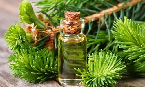 Кедровое масло характеризуется наличием большого количества витамина Е и полиненасыщенных кислот