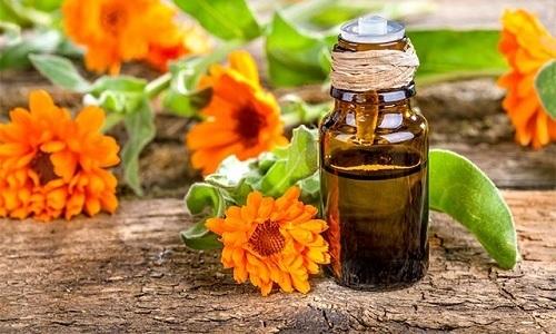 Масло из цветков календулы обладает бактерицидным, тонизирующим, восстанавливающим и укрепляющим действиями