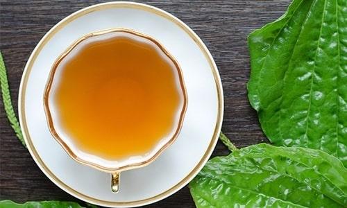 Запивать лекарственную смесь с чесноком следует отваром листьев подорожника