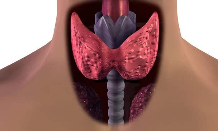 Активное вещество гепарина способствует усилению активности паратгормона