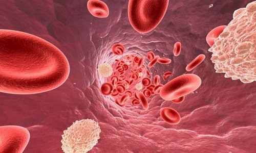 При попадании в организм перорально (приеме внутрь) воздействует в основном на кишечник, в кровь всасывается в малых количествах (3%)