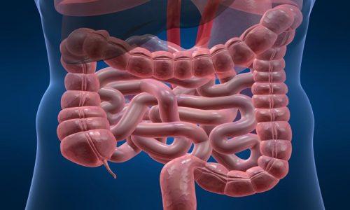 Внутрь средство принимают при заболеваниях ЖКТ по 3 раза в день до приема пищи в течение месяца и дольше