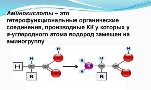 Составляющие препаратов на основе хлорида калия активно участвуют в процессе перемещения необходимых аминокислот
