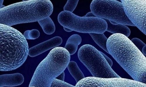 Простатит, вызванный бактериями, может быть острым или хроническим