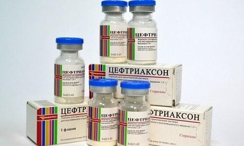 Препарат Цефтриаксон действует исключительно на грамотрицательную микрофлору