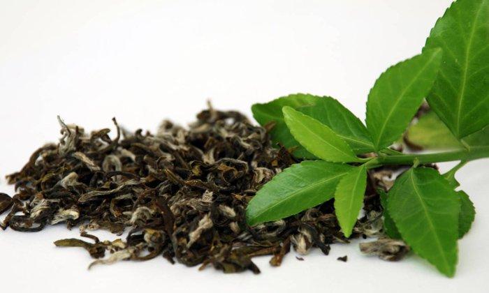 Полезный микроэлемент содержится в листовом чае