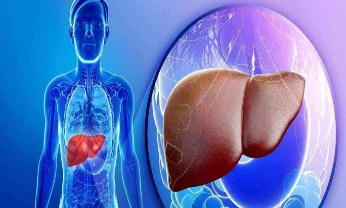 При патологических заболеваниях печени Лидокаин противопоказан
