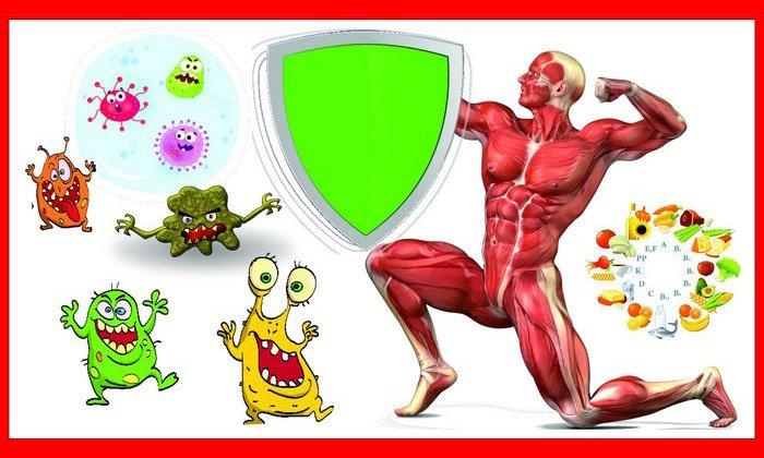 Препарат не только нормализует баланс полезной, вредной и условно-патогенной флоры в организме, но также обладает иммуномодулирующими свойствами