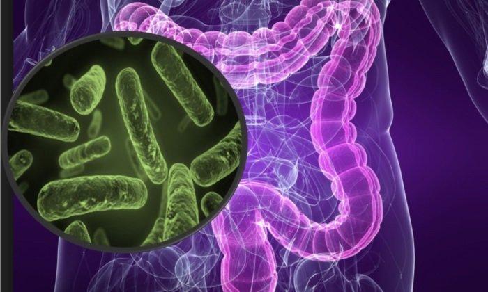 При нарушении работы микрофлоры кишечника рекомендуется принимать Динолак