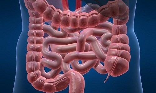 Препарат мягко воздействует на организм и равномерно усиливает работу кишечного тракта