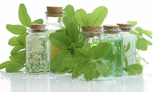 Фитотерапия с давних времен владеет целым арсеналом лекарственных растений для восстановления мужского здоровья