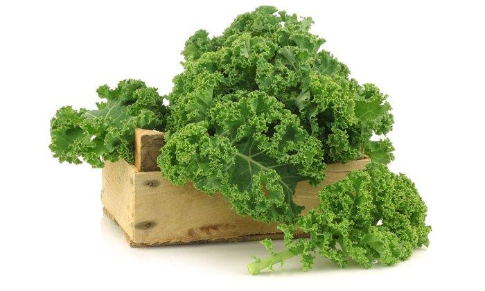 Витамин Р содержится в листовой капусте