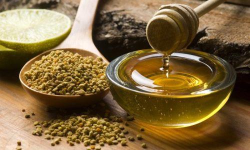Мед - продукт частичного преобразования нектара в организме пчелы
