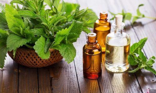 Экстракт ментола охлаждает кожу, усиливая эффективность препарата