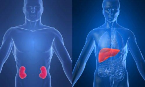 Активный компонент в небольшом количестве попадает в общий кровоток, проходит через печень и почки. Поэтому с осторожностью следует использовать при печеночной и почечной недостаточности