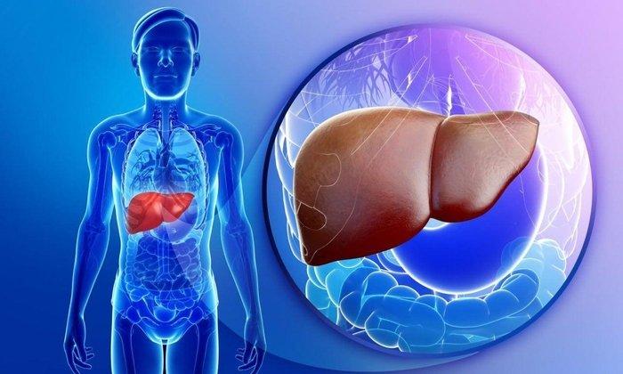 Лекарство противопоказано при гепатитах